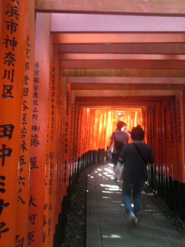 Tunnel of red Torii gates, Fushimi Inari Shrine, Kyoto