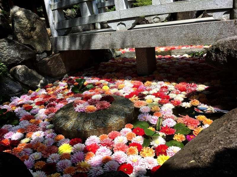 Nara Okadera temple