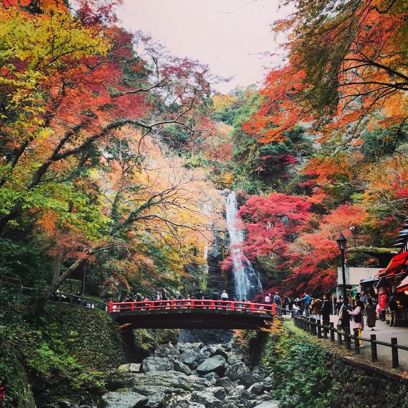 Minoo waterfall with autumn color