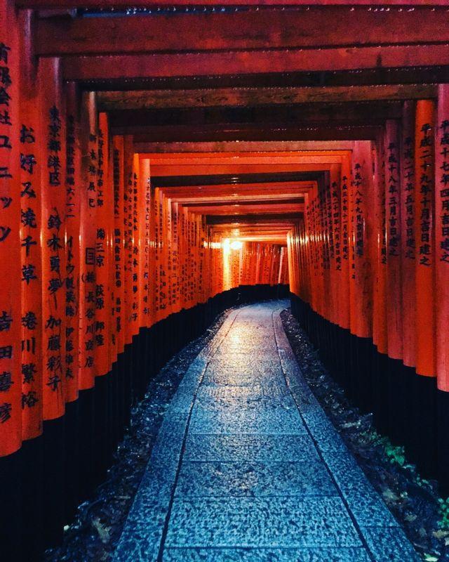 Fushimi inari shrine at 7am!