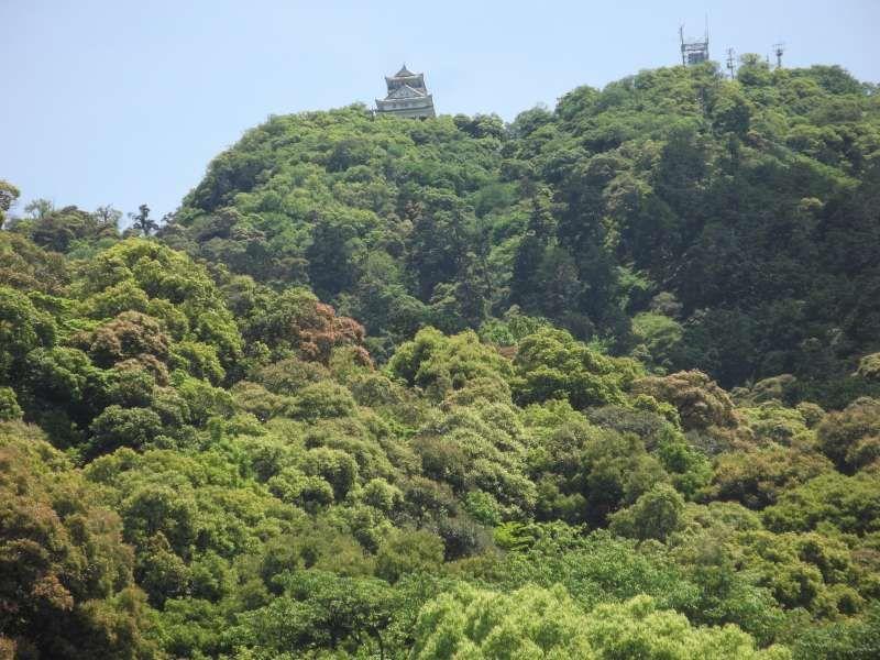 Giifu castle on top of Mt.Kinka.(328.86 meters high)