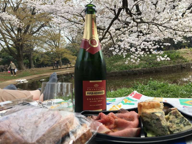 Ohanami with Champagne!