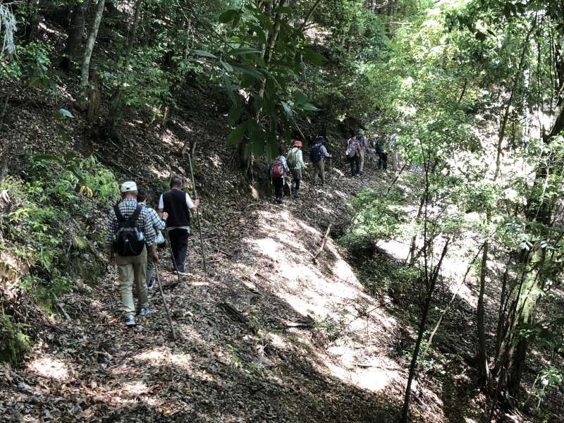 "We are walking on a ancient road. There are many ancient road the most famous ""Kumano Kodo"", ""Koya Choishi"" road ""Rujin"" road ""Koya seven climber"" road, so on. This route called"