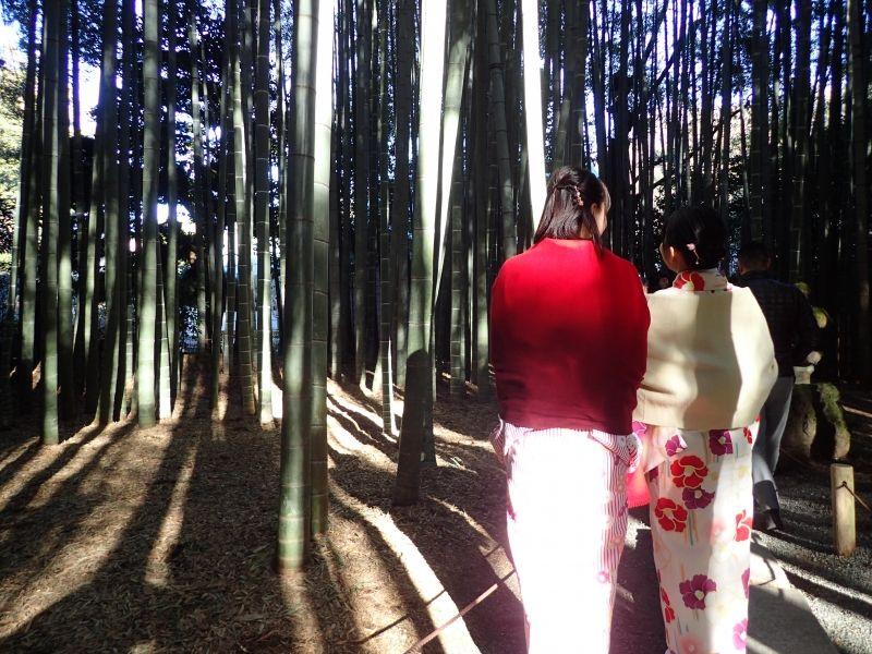 Bamboo temple, Kamakura
