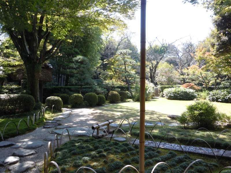 Tea garden in Urakuen