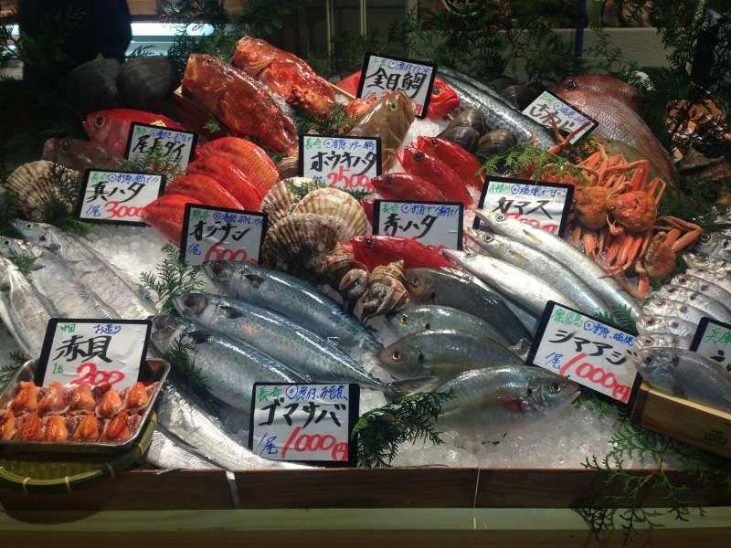 【Tsukiji market】exploring and sampling various Japanese food is fun!!