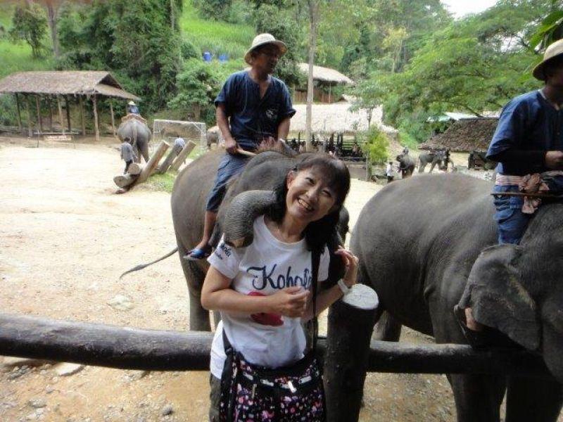I like elephants...in Chiang Mai, Thailand