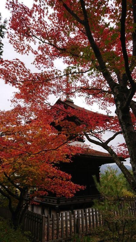 Jyojakkoji-Temple