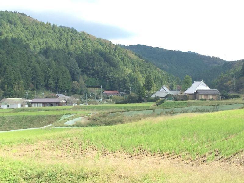Satoyama landscape(Shimoyama district, Toyota City)