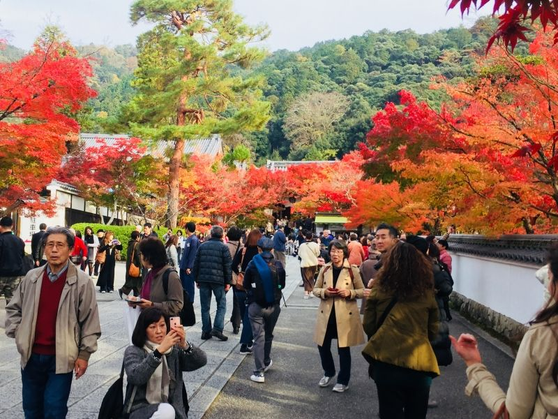 Lá đỏ của chùa Eokanđou, Kyoto Autumn of Eikanji temple, Kyoto