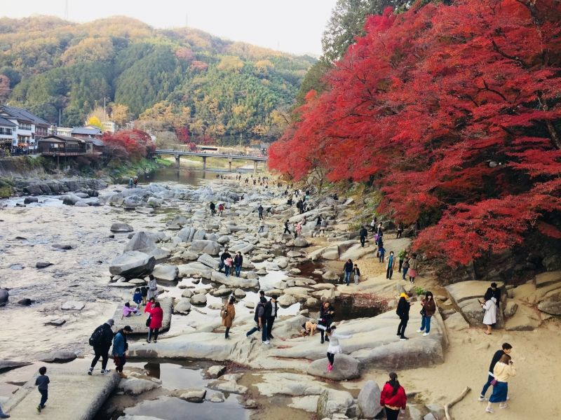 Lá đỏ của Kourankei, Aichi