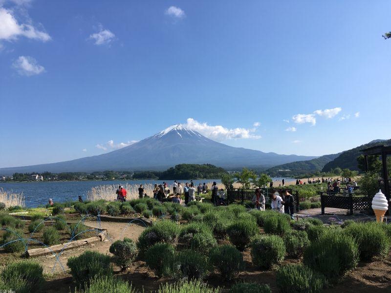 Mt. Fuji viewed from Kawaguchiko. It is a magnificent view.