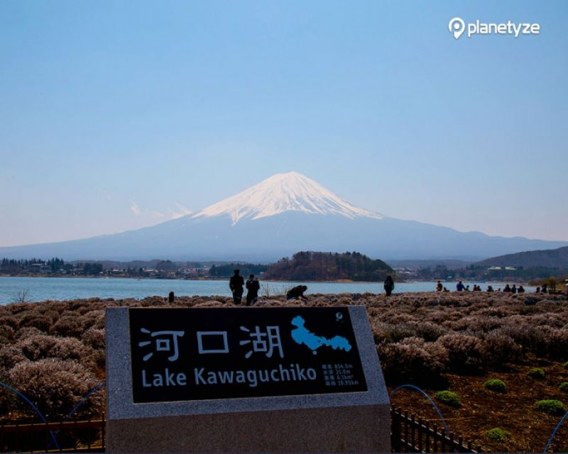 Mt. Fuji is the symbol of Japan, the highest conical peak in Japan, 3,771 meters high above the sea level, which is still an active volcano. Lake Kawaguchi is one of five lakes, created by the ancient eruption of Mt. Fuji, situated in the north of Mt. Fuji.
