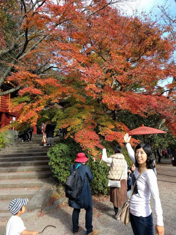 Me in Autumn Nara