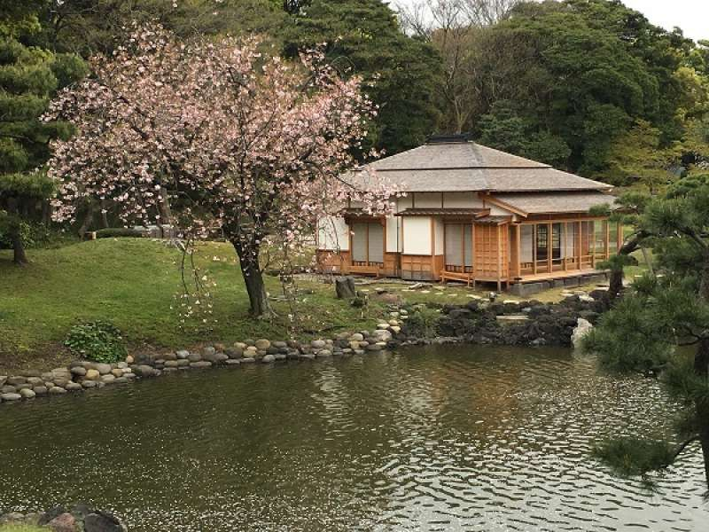 Hamarikyu Japanese Landscape Garden and tea house