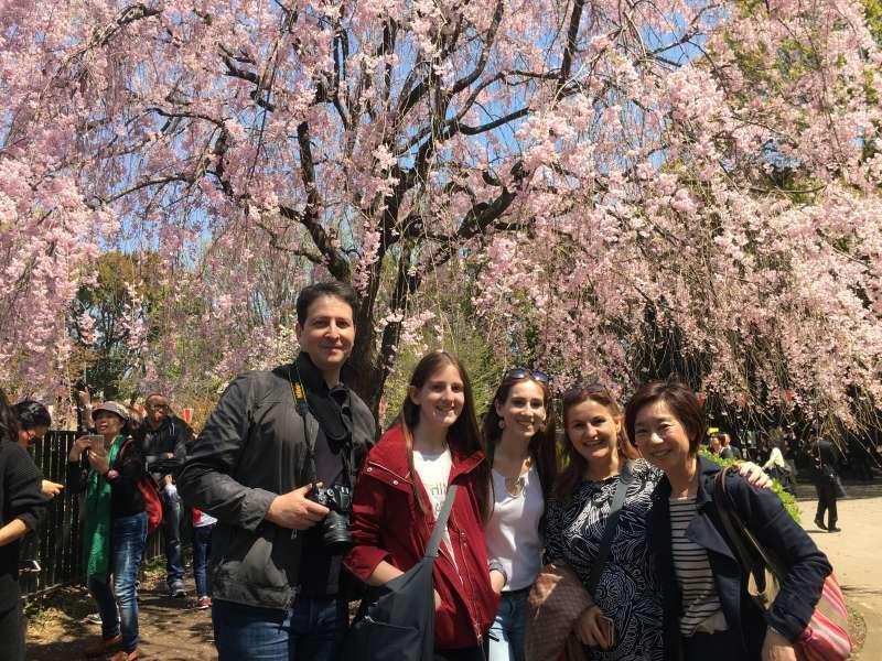 Beatiful day! Beatiful cherry blossom @ Ueno.