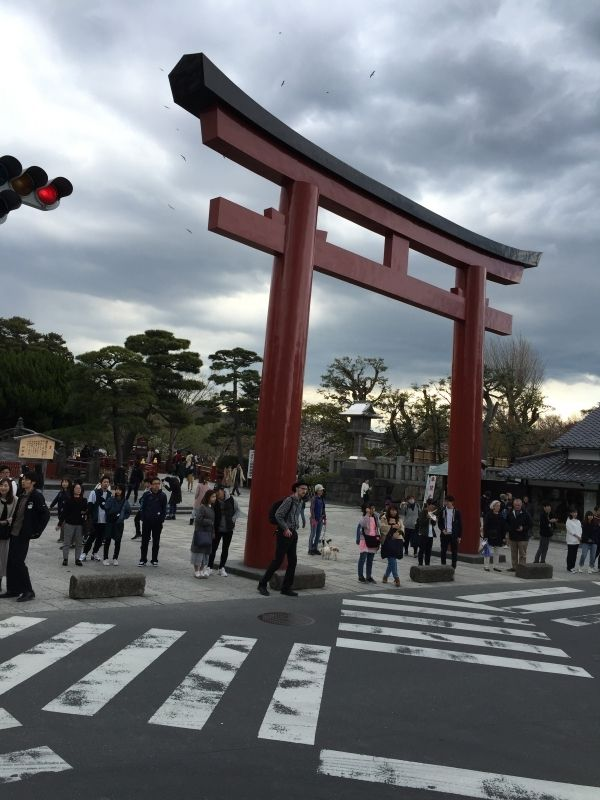 The main Torii gate of Kamakura Hachiman-gu shrine.  Kamakura is an old city and one of the most important cultural and historical cities in Japan following Kyoto and Nara, located only 50km south-west of Tokyo.
