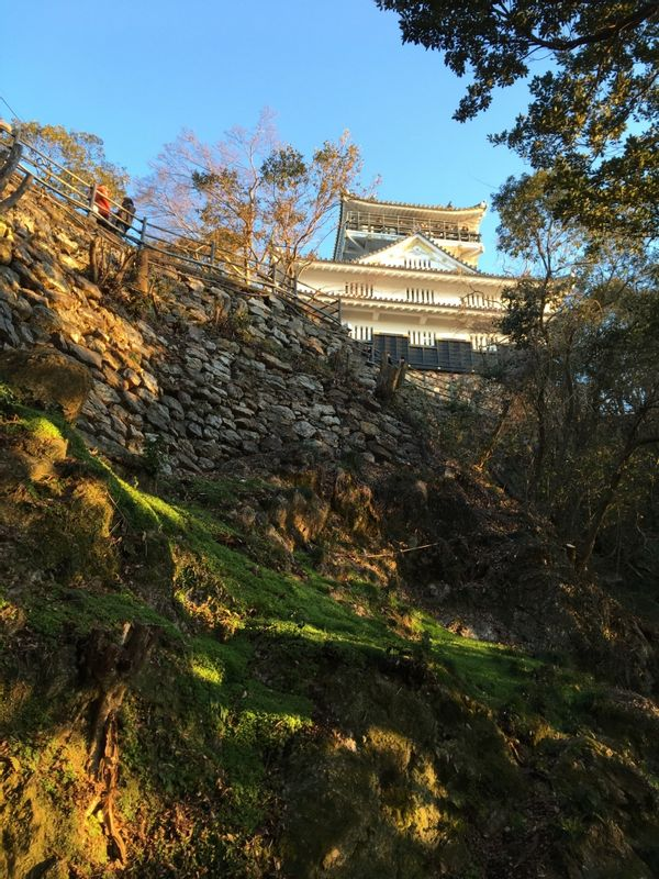 Gifu castle with stone wall.