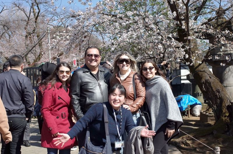 Japanese cherry blossoms at Ueno prak.