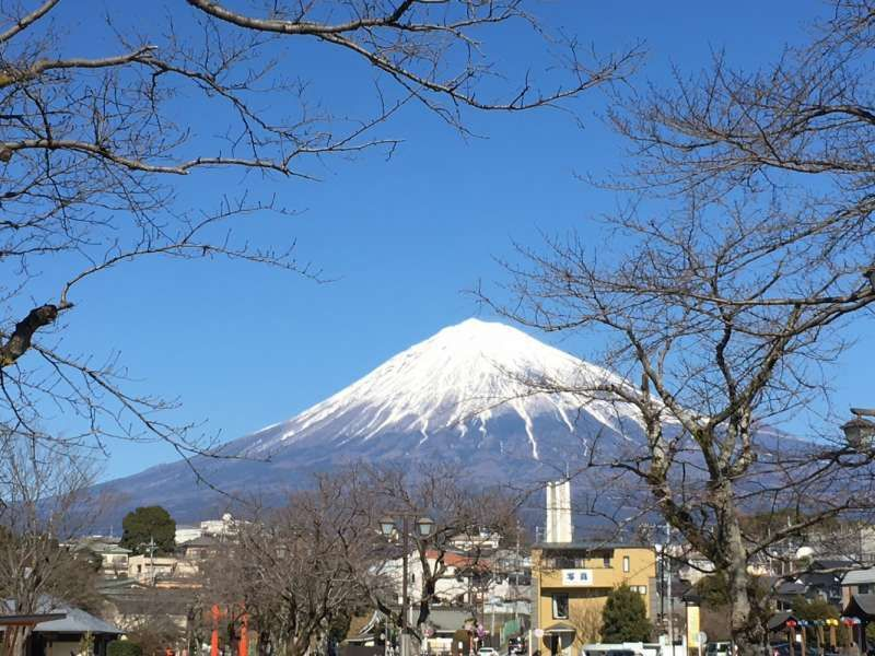 Mt. Fuji View from Sengen shrine