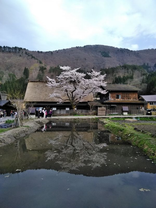 Shirakawa-go. Walk around to see and enjoy the whole village and look closely at each house. Discover