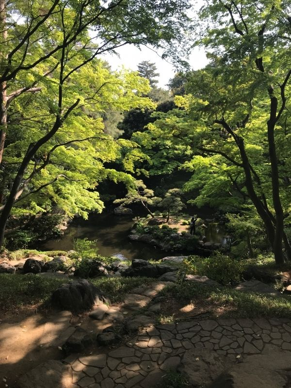 A beautiul garden in the suburbs of Tokyo.  It is situated on the cliff of the border of Musashino Terrace.  It consists of a higher and a lower level and a waterfall connecting the two.  On the site there are also a Western-style house and a tea house overlooking a pond.  This garden is a place of scenic beauty designated by the nation.