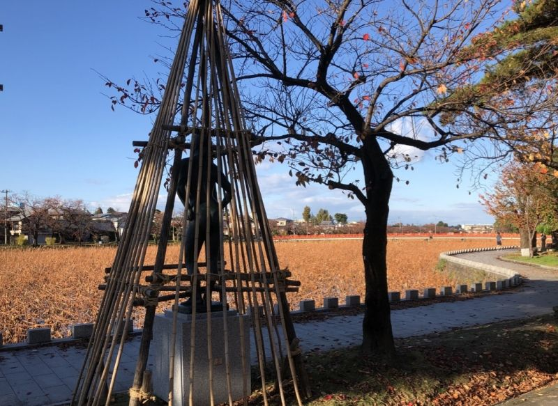 Takada Park in autumn.  Dozens of statues are covered with show shelters.