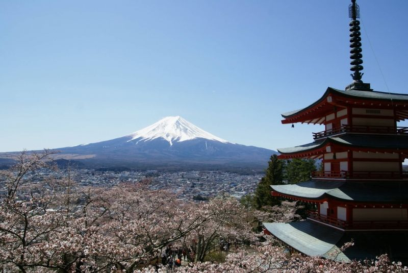 View of Mt.Fuji with 5stories pagoda at cherry blossom season in Yamanashi