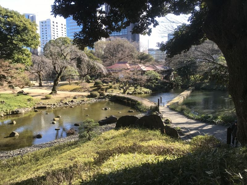 Koishikawa Korakuen: A Japanese garden in Bunkyo city (February 2020)