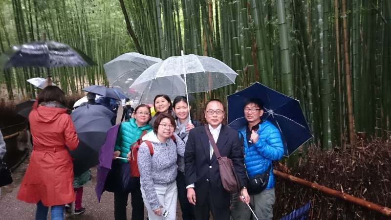 We're walkin' in the rain, just walkin' in the rain. Walkin' at Bamboo Forest in Kyoto.