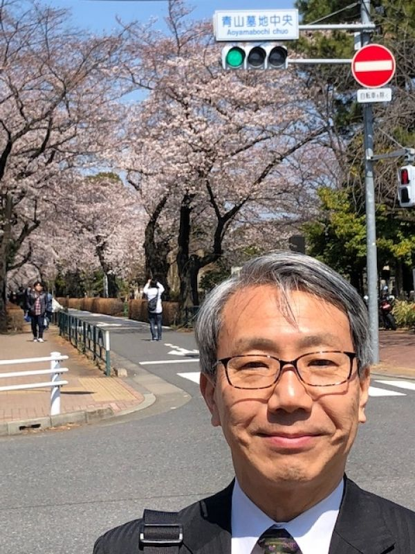 Cherry in bloom at Aoyama bochi (cemetery)  in Tokyo.