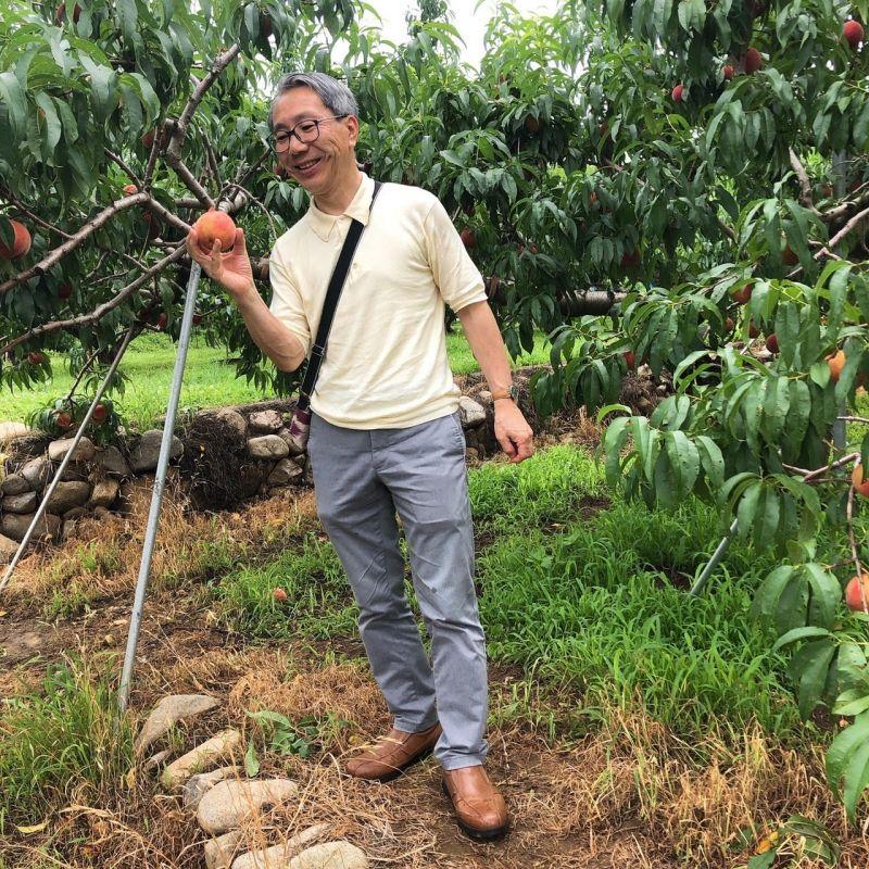 Peach Orchard in Yamanashi, where is close to Mt.Fuji.