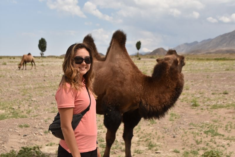 We met camels.