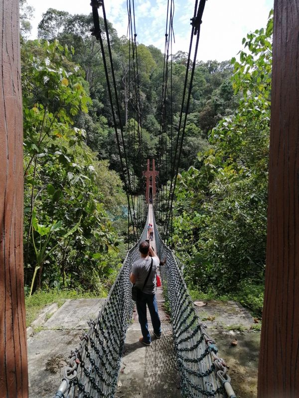Suspension Hanging.