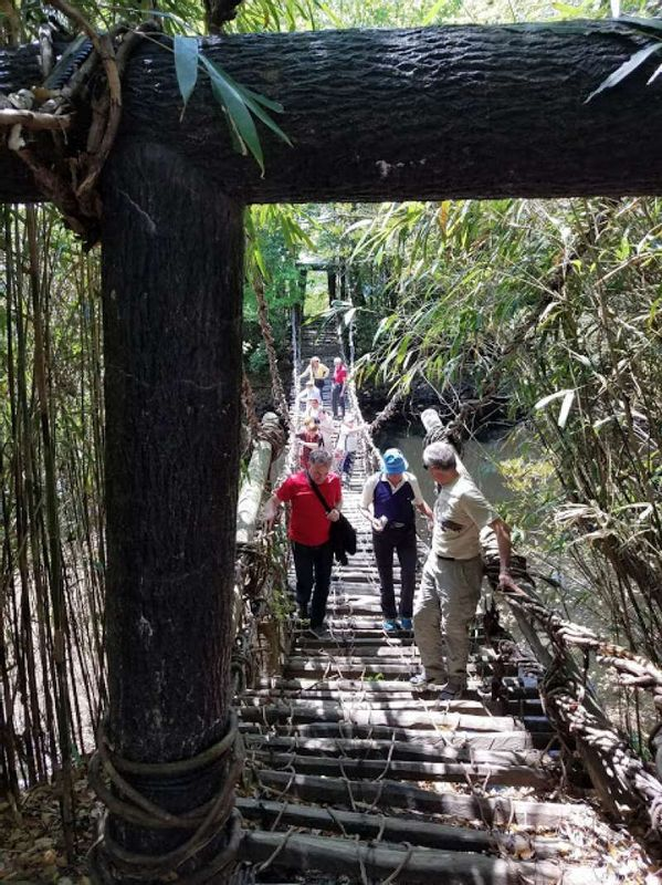 A hanging bridge in the Shikoku- village in Kagawa pref.