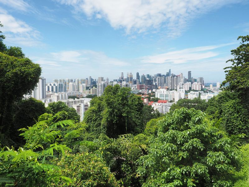 View of the city from Mount Faber