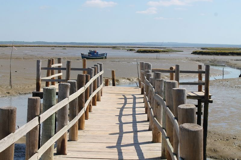 Sado Estuary on low tide