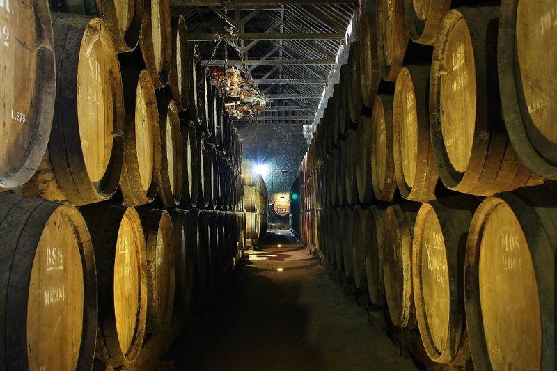 Wine cellar in Setúbal Wine Region