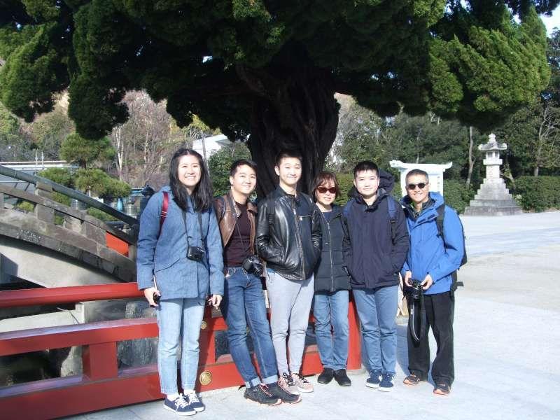 In front of a juniper tree at Tsurugaoka Hachiman Shrine