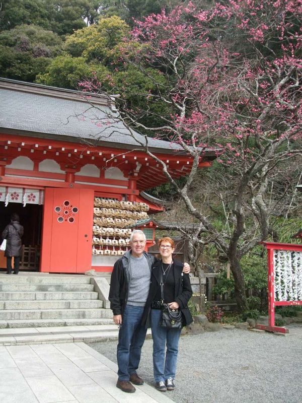 The Japanese apricot was awesome at Egara Tenjin Shrine.