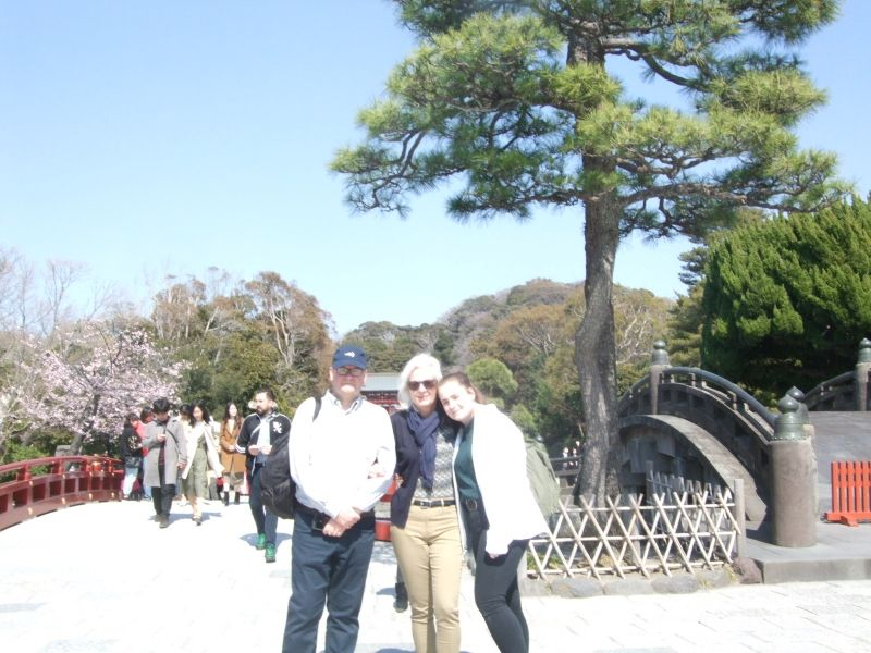 The blue sky and the green trees are so beautiful at Tsurugaoka Hachiman Shrine