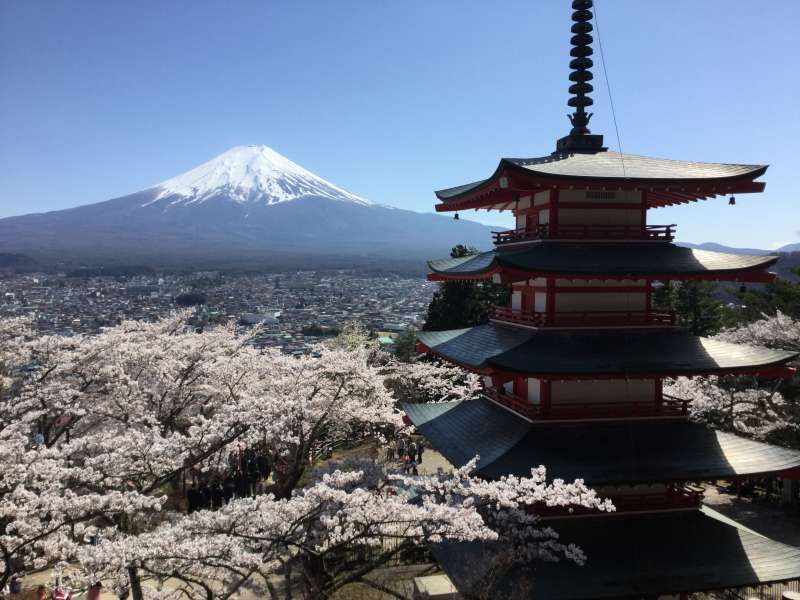 Lake Kawaguchi tour; View of Mt. Fuji and a Pagoda at Arakurayama park