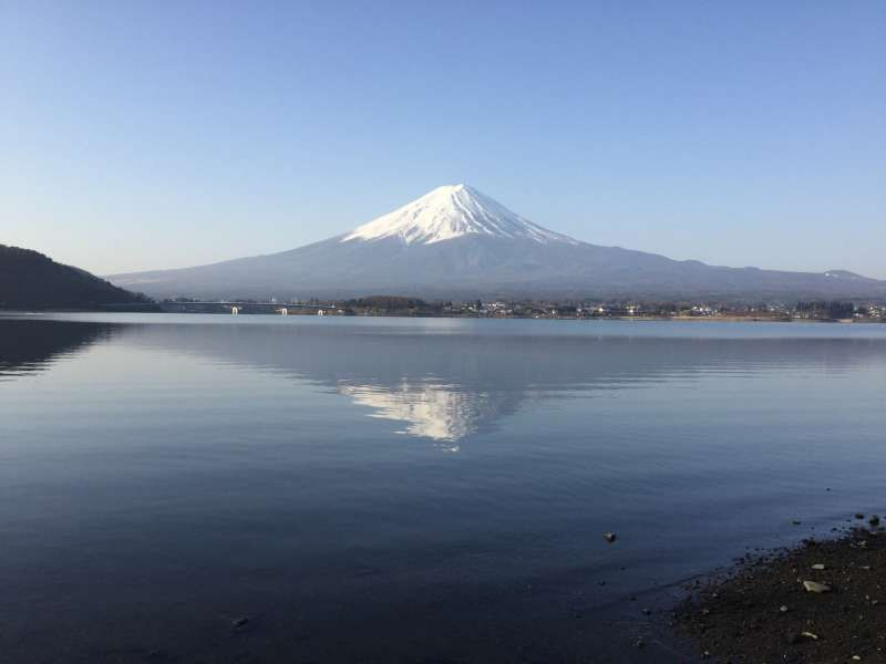 Lake Kawaguchi tour; Mirror view of Mt. Fuji on the lake in the early morning