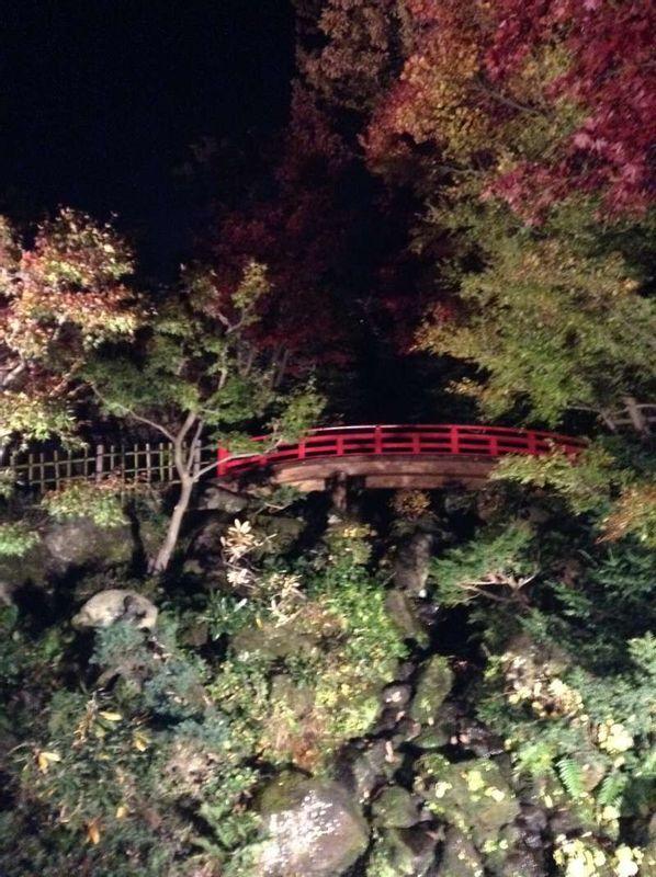 Jardin Fujita