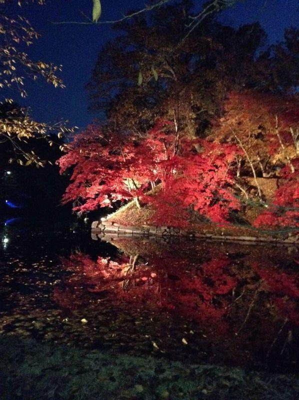 Parc d'Hirosaki