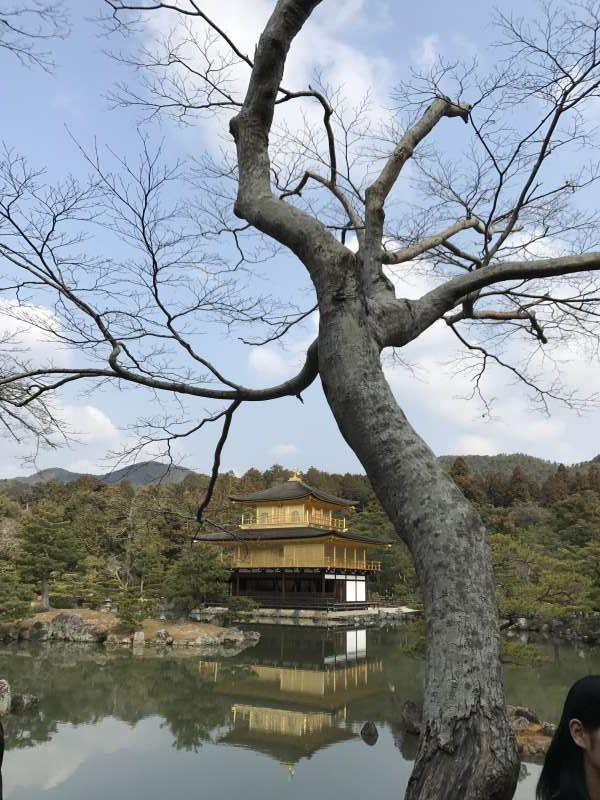 Kinkaku-ji(Kioto)