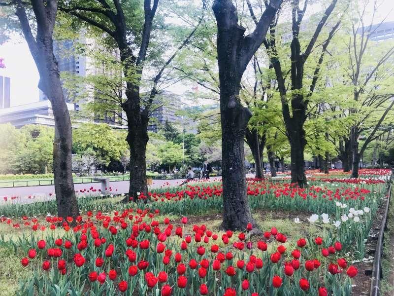 Parque de Hibiya(Tokio)