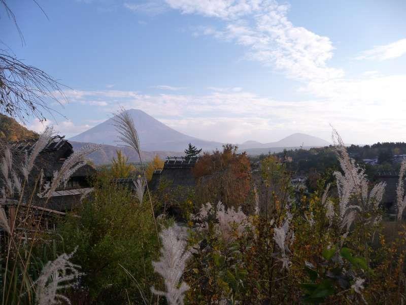Mt. Fuji from Iyashi no Sato Nenba.