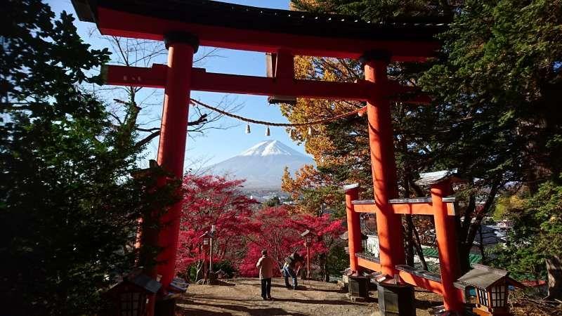 Torii Gate of Arakurayama Sengen Shrine overlooking Mt. Fuji