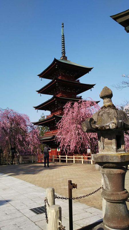 Five-Storied Pagoda at Saishoji Temple, Hirosaki.